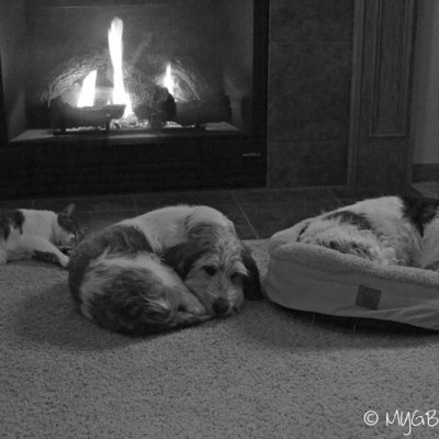 Family Warmth | GBGV | Black and White Sunday