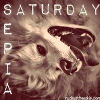 It's Time | GBGV | Sepia Saturday