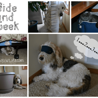 Family Hide and Seek | GBGV | Wordless Wednesday