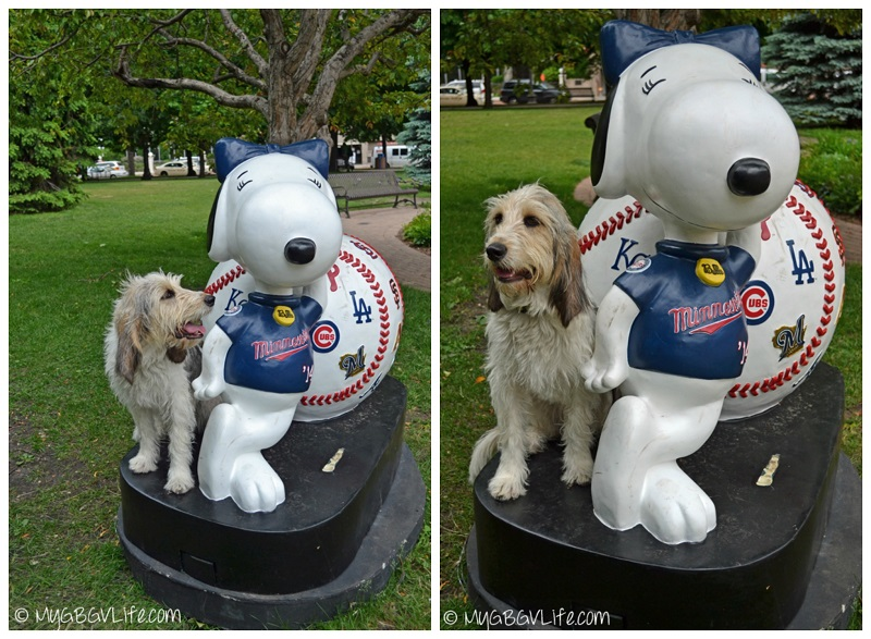 My GBGV Life Bailie with Snoopy's sister Belle