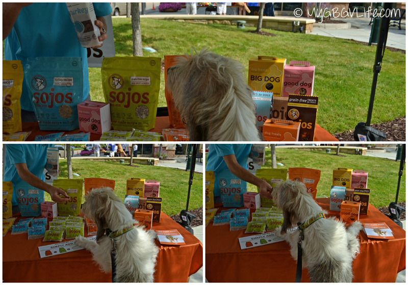 My GBGV Life woofstock sojos booth
