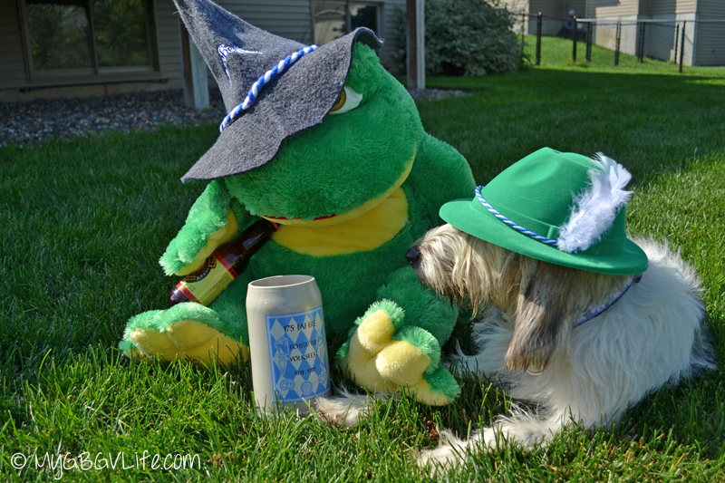 My GBGV Life Oktoberfest frog stole our beer