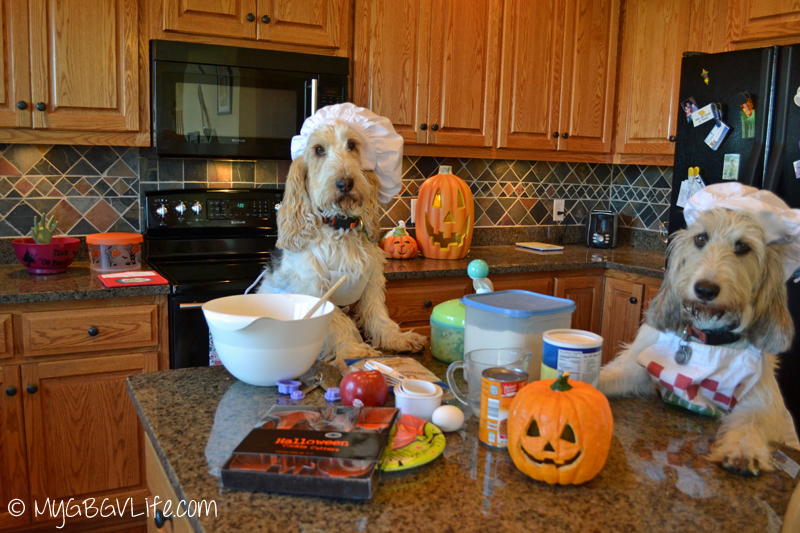 My GBGV Life Emma and Bailie ready to bake Halloween Cookies