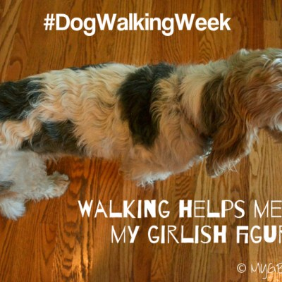 My 2 Favorite Benefits Of Walking #DogWalkingWeek