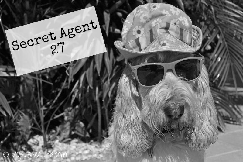 My GBGV Life Secret Agent 27