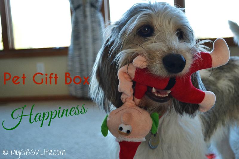My GBGV Life w pet gift box favorite toy