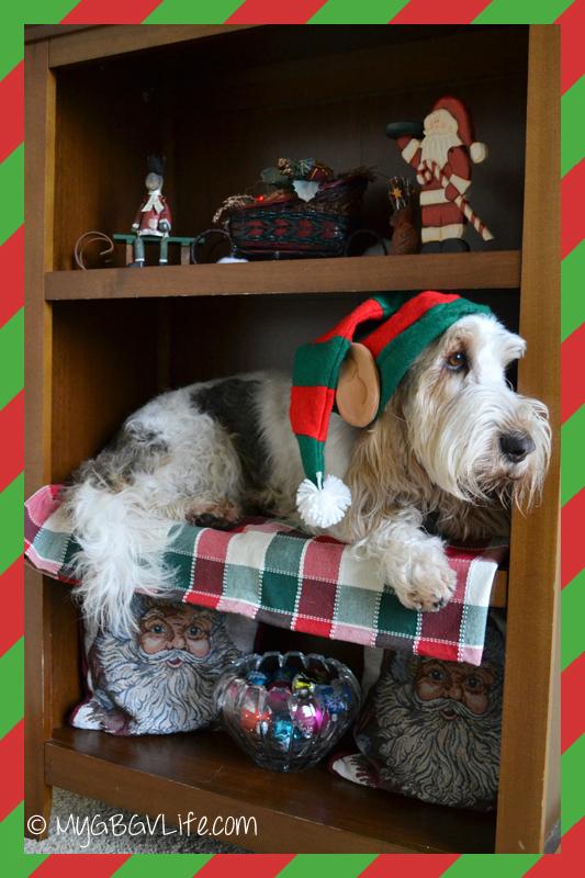 My GBGV Life the real elf on the shelf