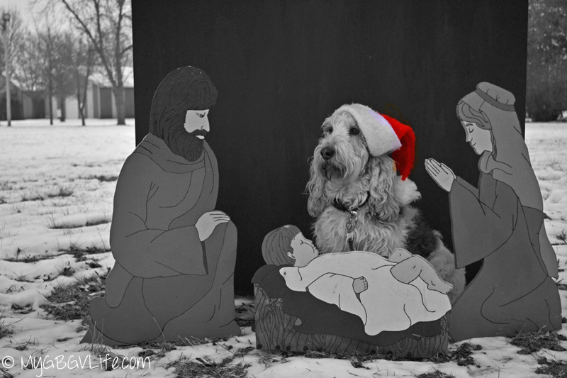 My GBGV Life with mary and joseph in the manger