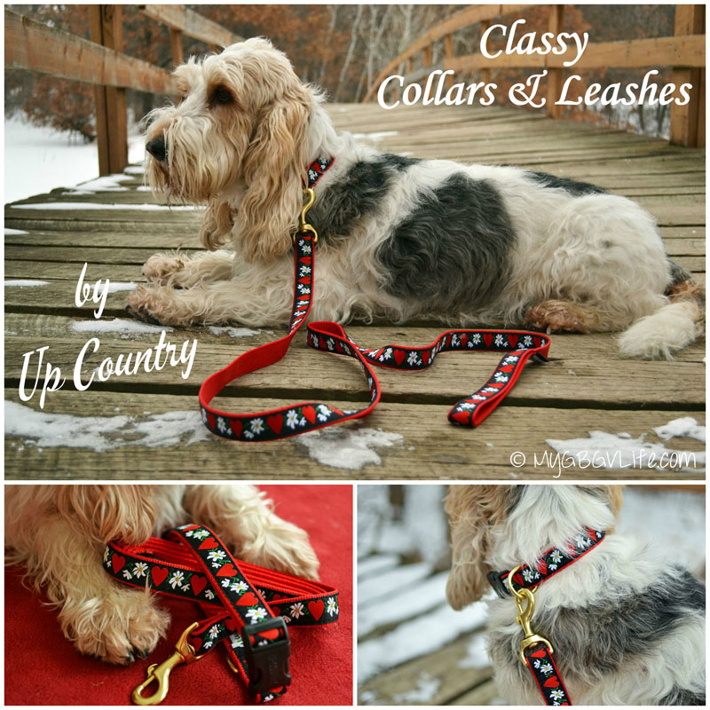 My GBGV Life Up Country collar giveaway