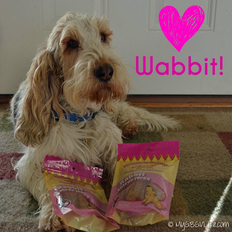 My GBGV Life thief loves wabbit