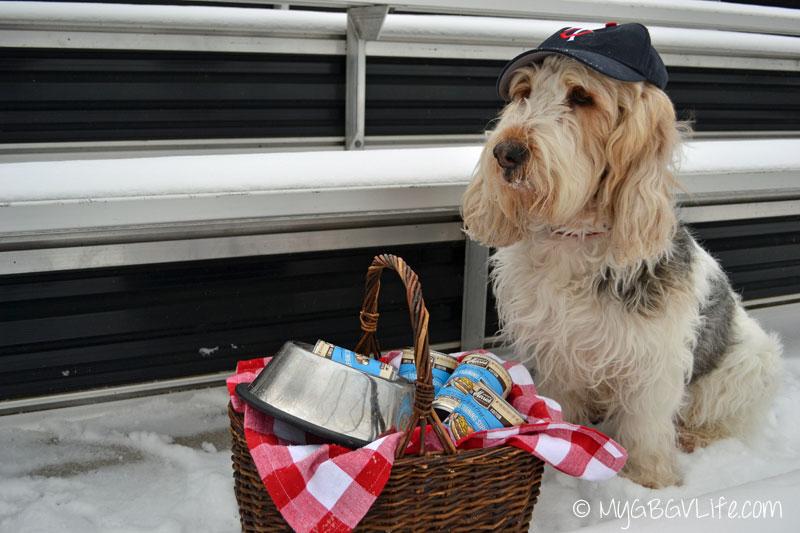 My GBGV Life home run picnic basket