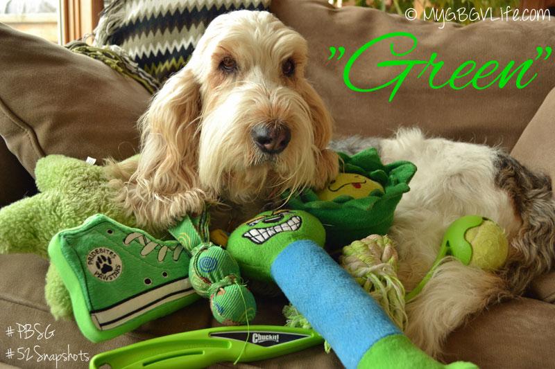 My GBGV Life Green