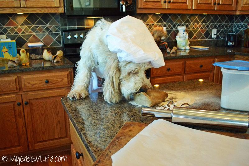 My GBGV Life squirrel dough sniff test