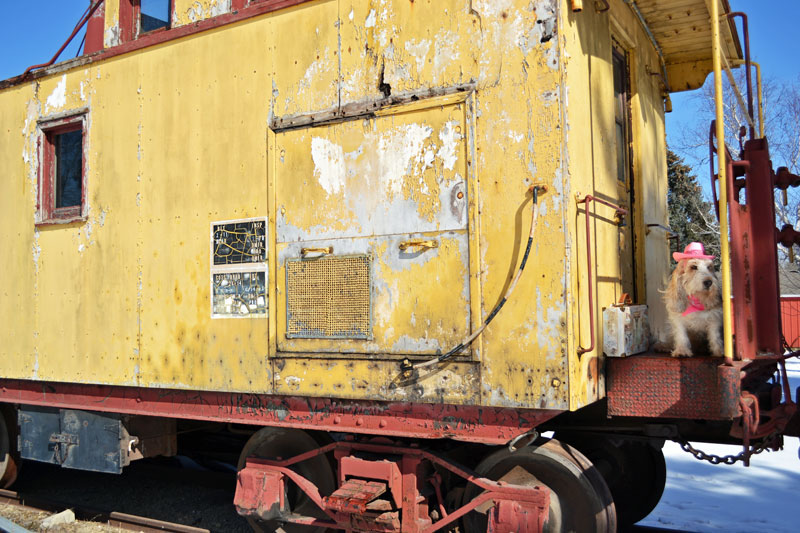 My GBGV Life wind on the caboose travel
