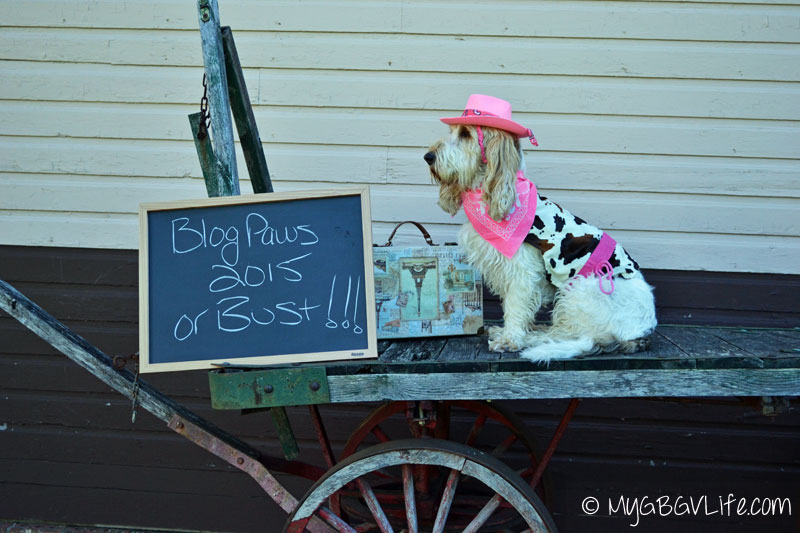 My GBGV Life headed to BlogPaws