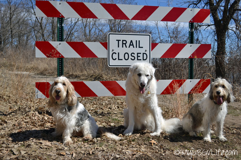 My GBGV Life trail closed mischief