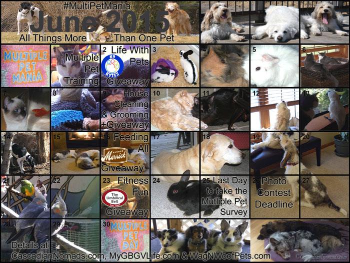 Calendar-Images-together-JP