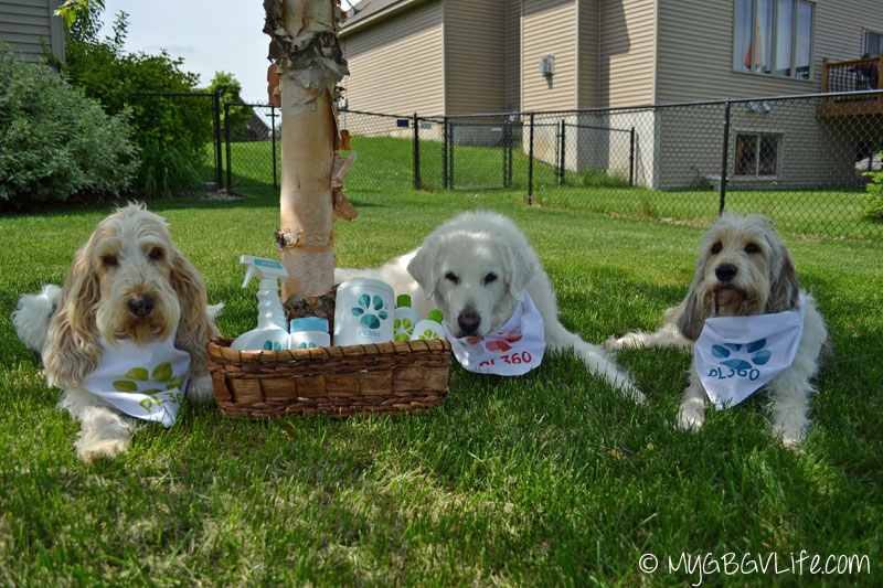 Pet Friendly Cleaning With Pl360 Multipetmania