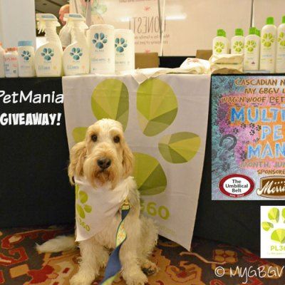 Pet Friendly Cleaning With PL360 #MultiPetMania