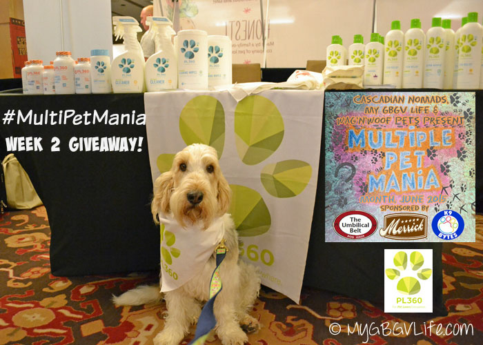 My GBGV Life pet friendly cleaning supplies from PL360