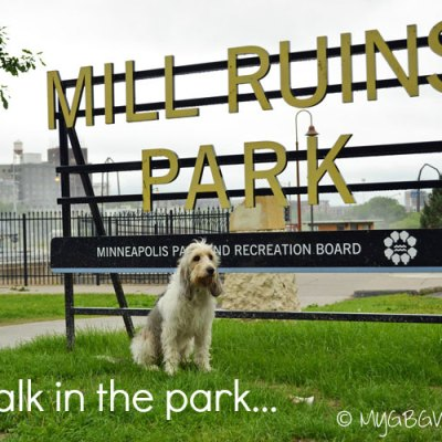 Exploring Mill Ruins Park