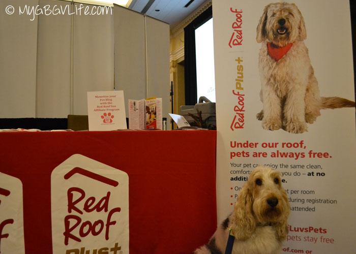 My GBGV Life Red Roof Inn Pet Friendly Lodging