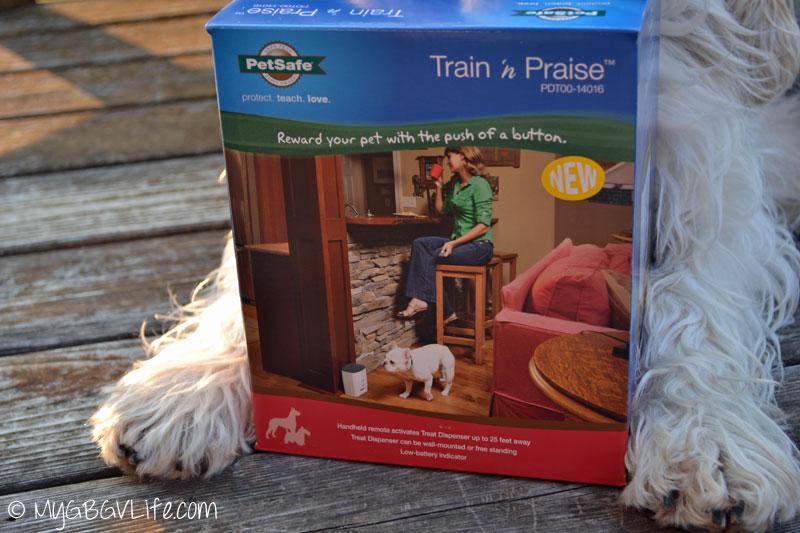 My GBGV Life Train 'n Praise