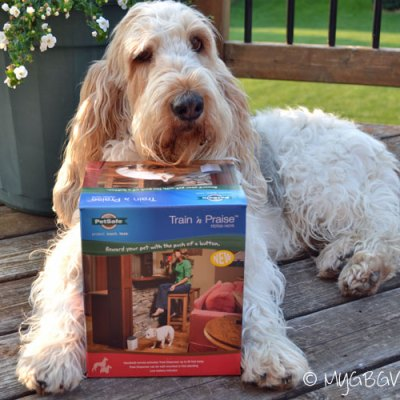 Dog Training With Train 'n Praise {Giveaway}