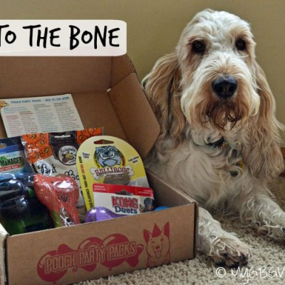 Bad To The Bone Pooch Party Packs