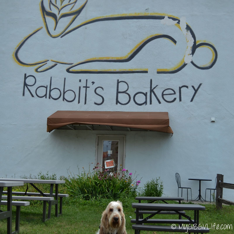 My GBGV Life selfie on the road at the wabbit bakery