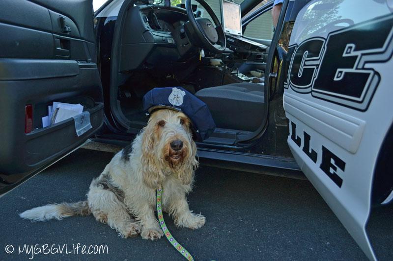 My GBGV Life Officer Emma with patrol car