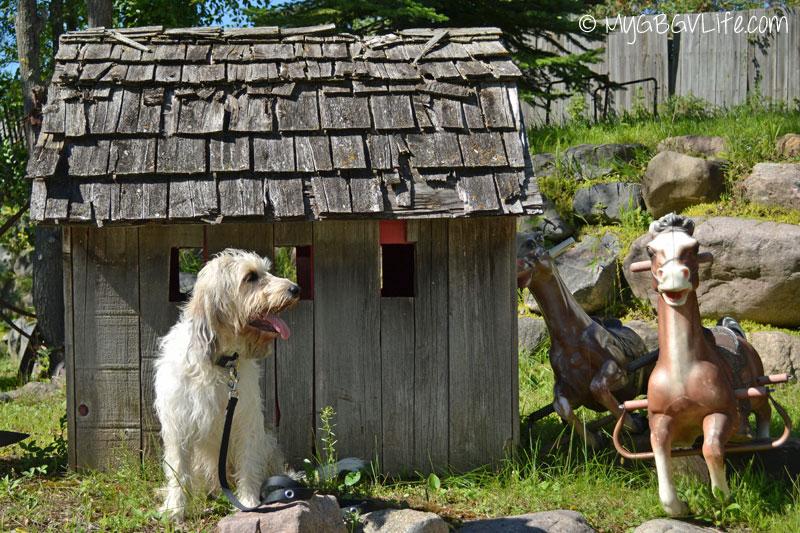 My GBGV Life Bailie found a house with horses