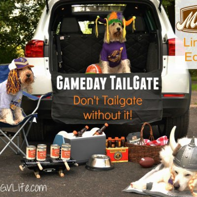 Tailgating And Football – A Perfect Match