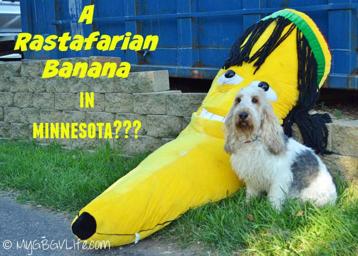 My GBGV Life Emma with the Rastafarian banana