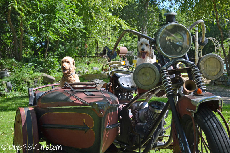 My GBGV Life close up in the harley
