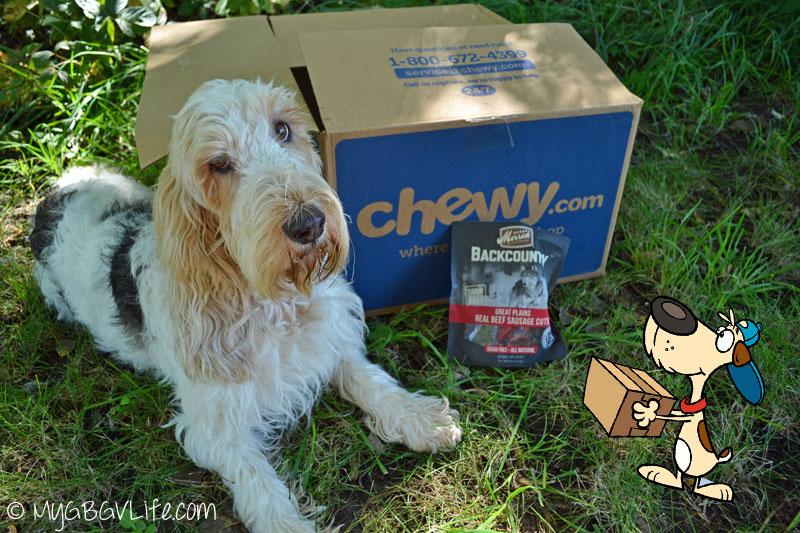 My GBGV Life Emma with Chewy cartoon dog