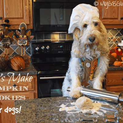 Simple Pumpkin Cookies And A Baking Calendar
