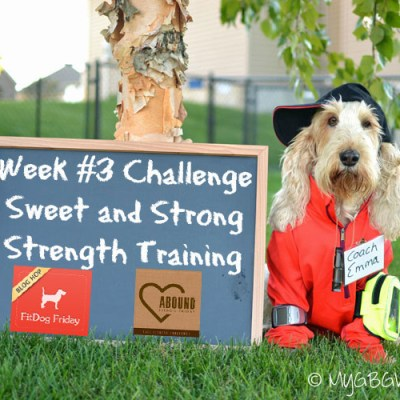 Sweet And Strong Strength Training – Fall Fitness Challenge Week 3 #FallFitDog