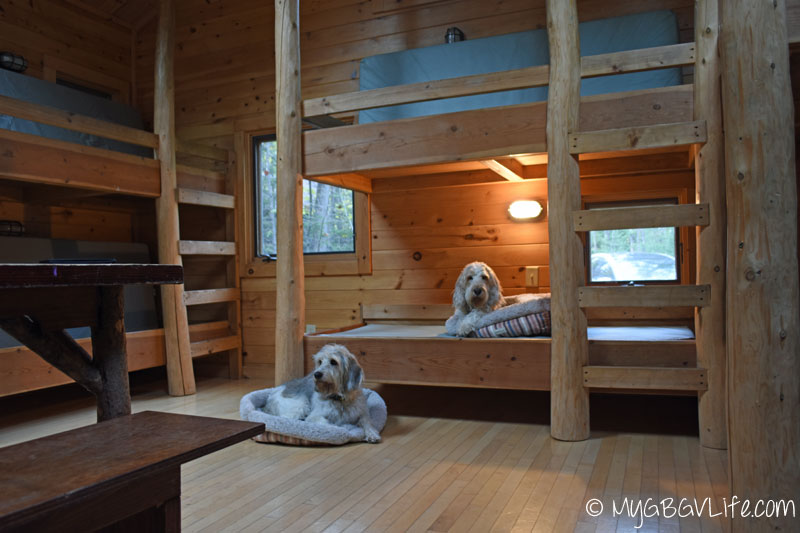 My GBGV Life Bailie and I claimed our bed areas.