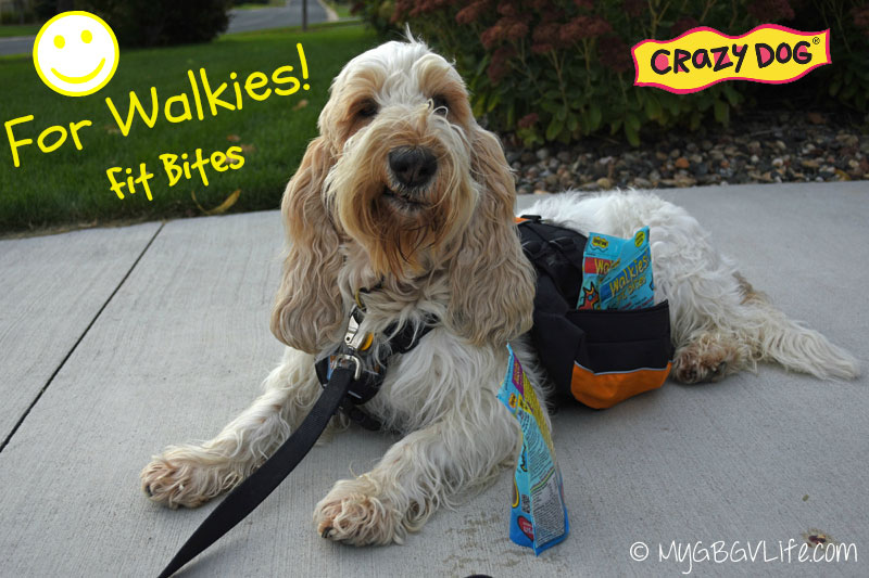 GBGV-smile-for-walkies