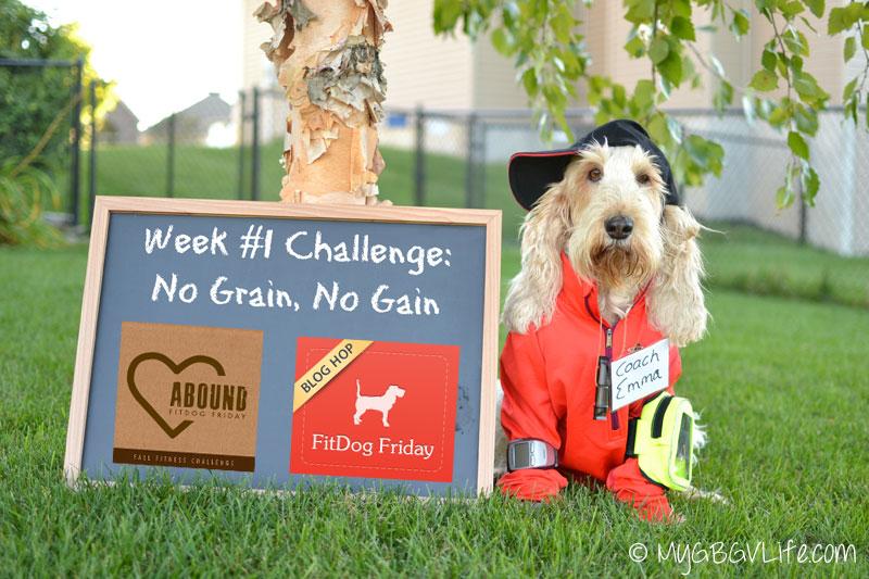 My GBGV Life the week one challenge, no grain, no gain