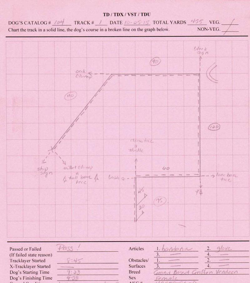 My GBGV Life Bailie's TD track map