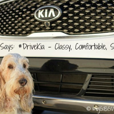 Kia Sorento – Classy, Comfortable, and Spacious #DriveKia