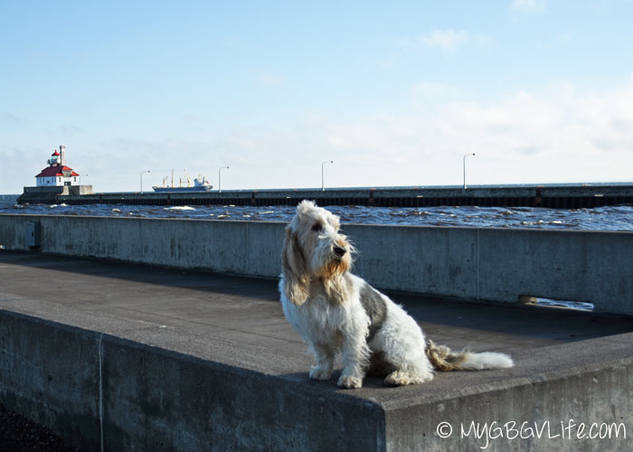 My GBGV LIfe Emma at the pier