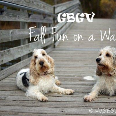 Fall Fun On A Walk