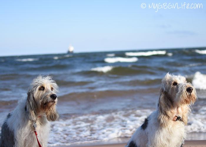 My GBGV Life Bailie and I at the beach
