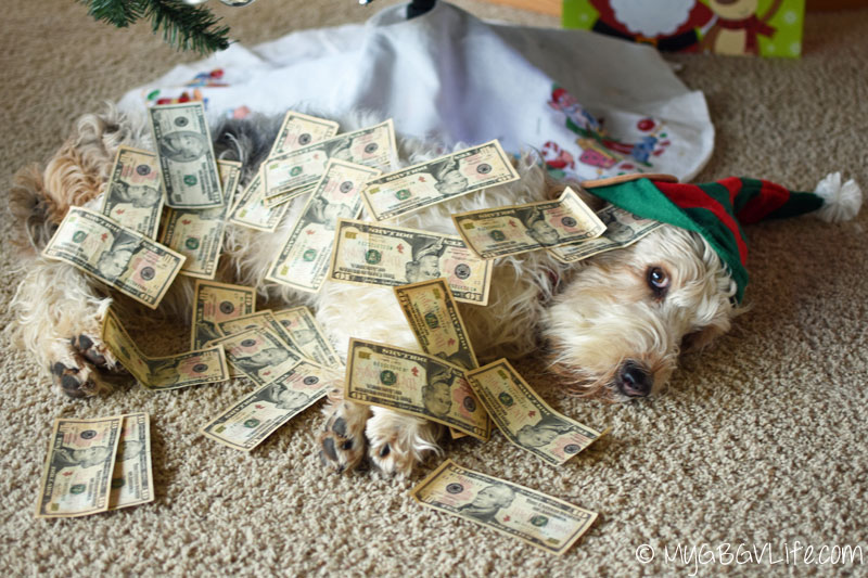 My GBGV LIfe Emma rolling in holiday cash