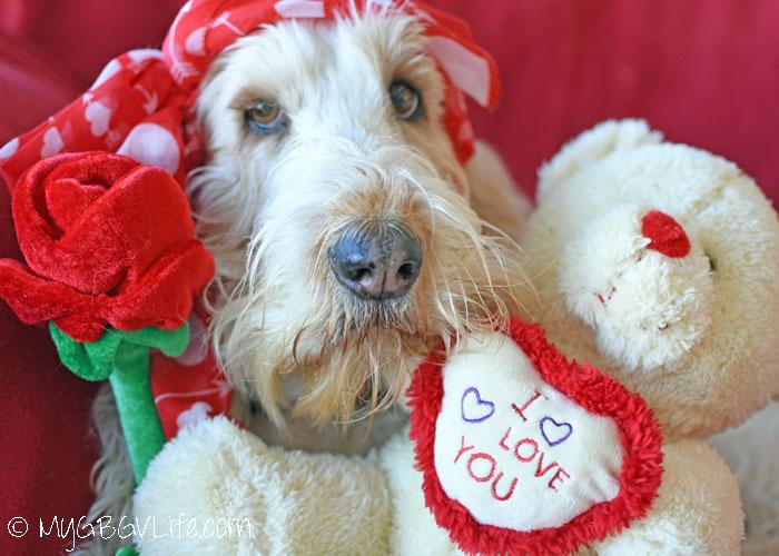My GBGV Life Be Mine Valentine Selfie
