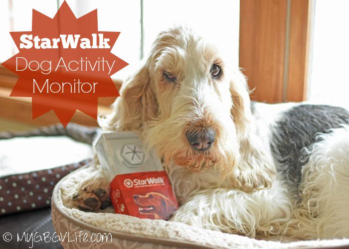 My GBGV Life StarWalk Dog Activity Monitor
