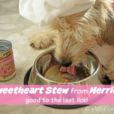 Sweetheart Stew Good To The Last Lick